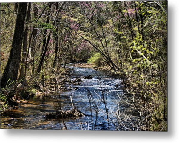 The Brook Metal Print