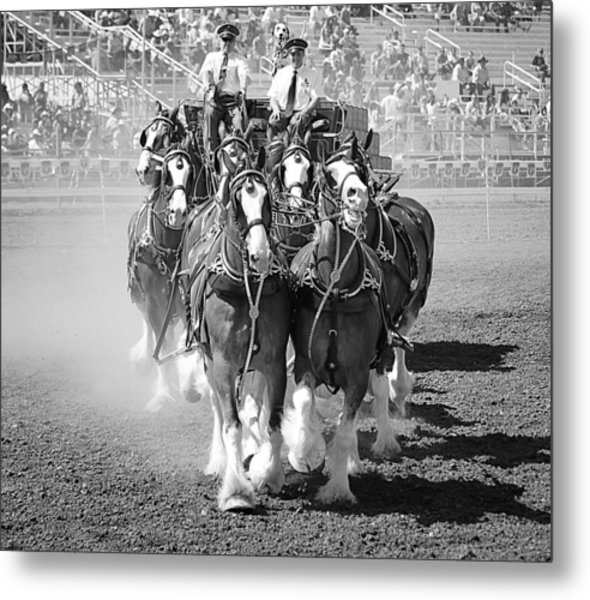 The Budweiser Clydesdales Metal Print