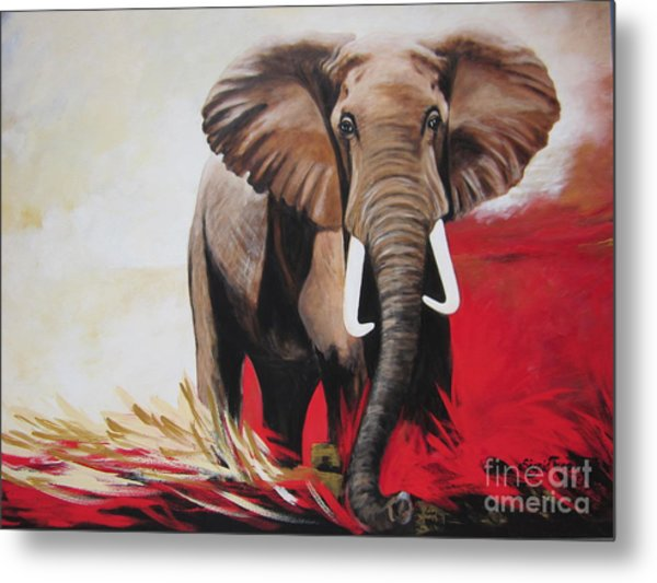 Win Win - The  Bull Elephant  Metal Print