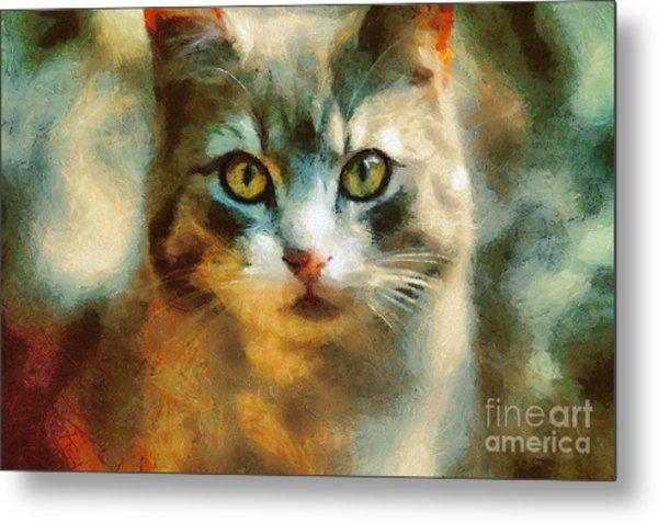 The Cat Eyes Metal Print