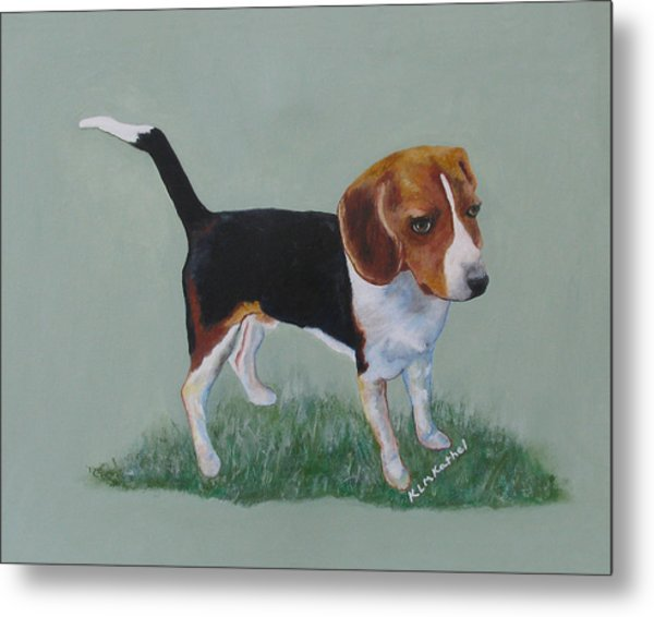 The Cautious Beagle Metal Print