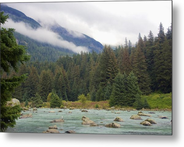 The Chillkoot River 2 Metal Print