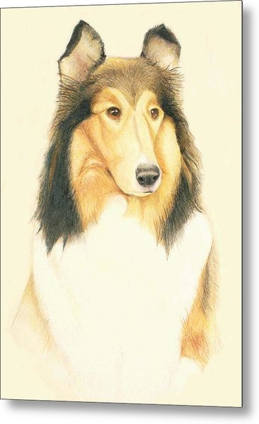 The Collie Metal Print