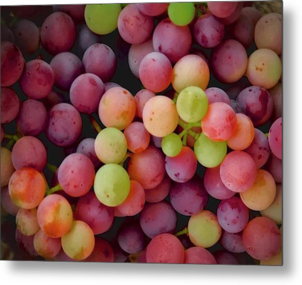 Colors Of Grapes Metal Print