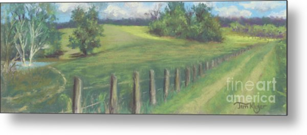 The Cow Path To The Pond Metal Print by Terri  Meyer