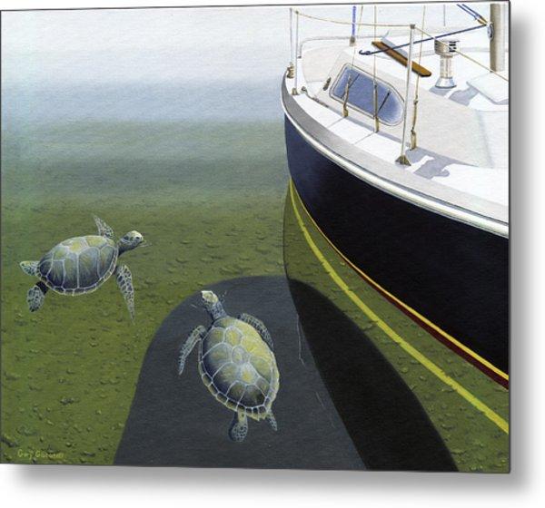 The Curiosity Of Sea Turtles Metal Print