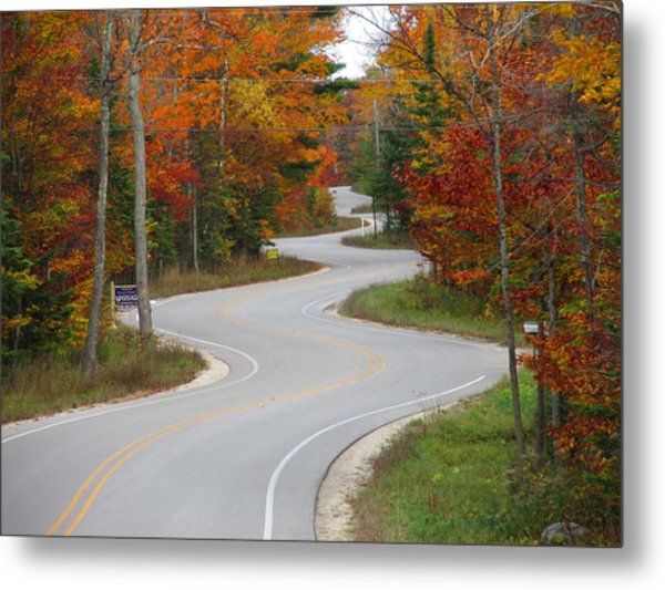 The Curvy Road Metal Print