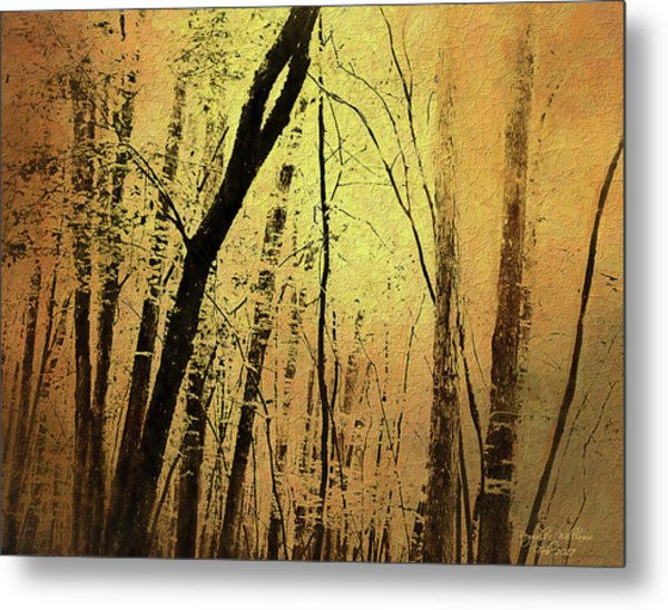 The Dawn Of The Trees Metal Print