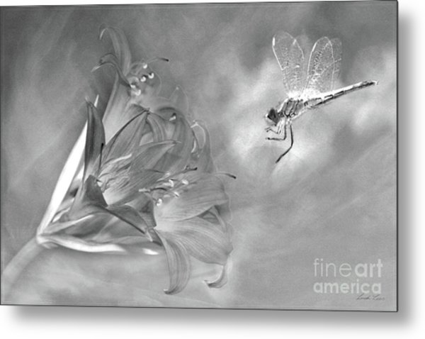 The Dragonfly And The Flower Metal Print