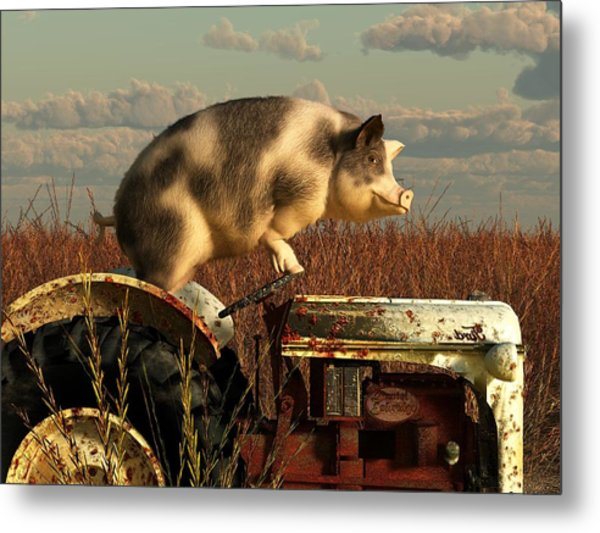 The Dream Of A Pig Metal Print