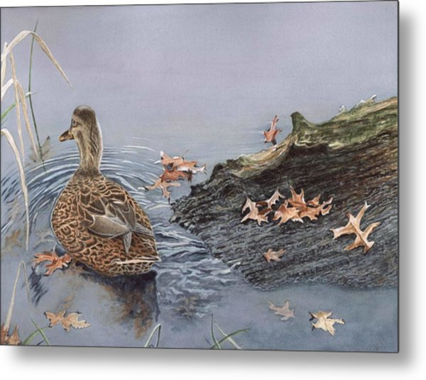 The Duck And The Alligator Metal Print