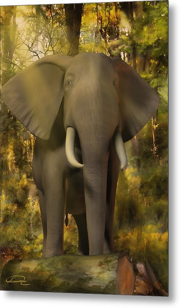 The Elephant Metal Print by Emma Alvarez