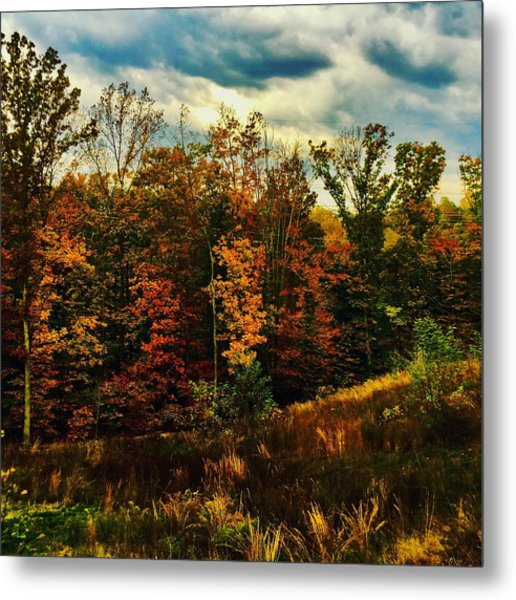 The First Days Of Fall Metal Print