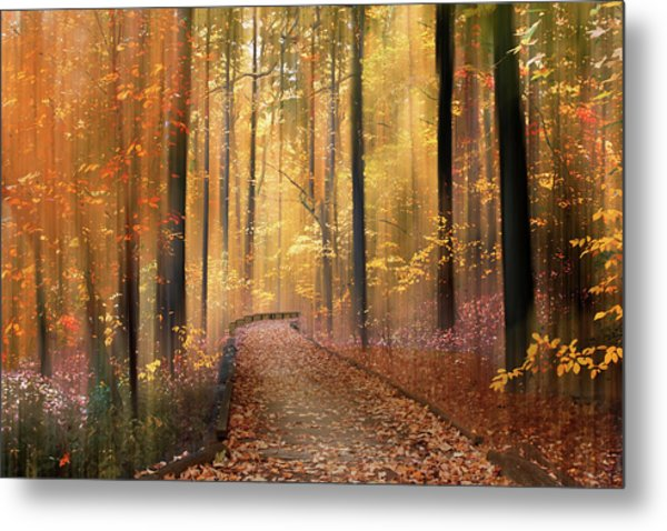 Metal Print featuring the photograph The Flickering Forest by Jessica Jenney