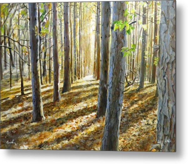The Forest And The Trees Metal Print
