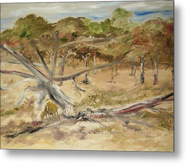 The Fourty-niner Highwaytrees Metal Print by Edward Wolverton