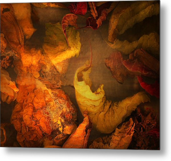 The Frail And Singular Fortress Of The Dissolving Self Metal Print by Peter Ciccariello