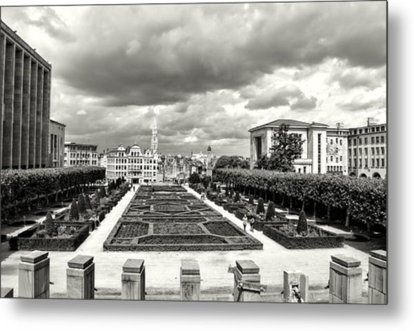 The Geometric Garden In Black And White Metal Print