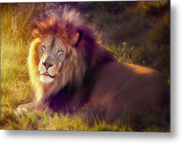 The Glorious King  Metal Print