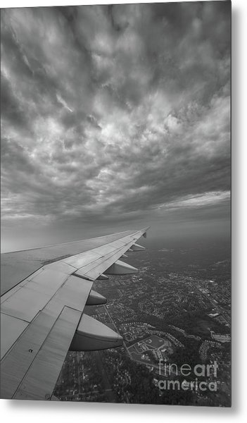 The Golden Wing Bw  Metal Print