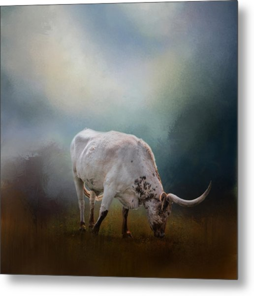 The Grazing Texas Longhorn Metal Print