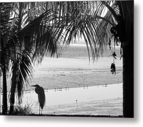 Watching The Tide Metal Print