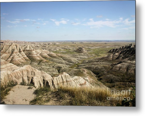 The Great Expanse Metal Print by Sandy Adams
