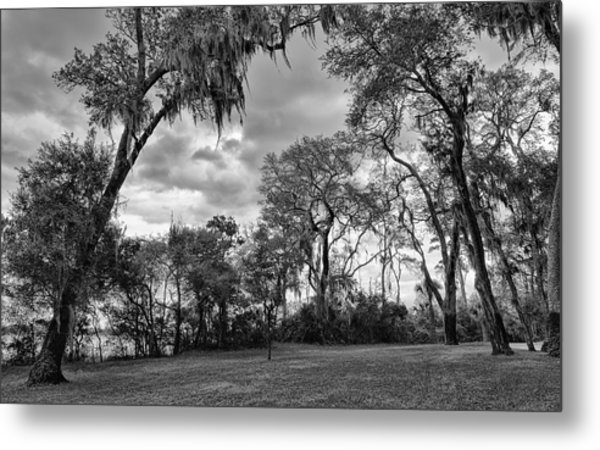 The Grounds Of Fort Caroline National Memorial Metal Print