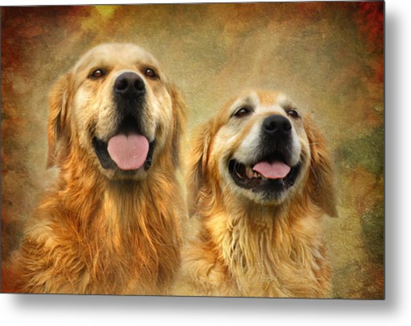 The Happy Couple Metal Print by Trudi Simmonds