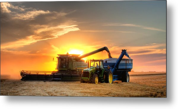 The Harvest Metal Print