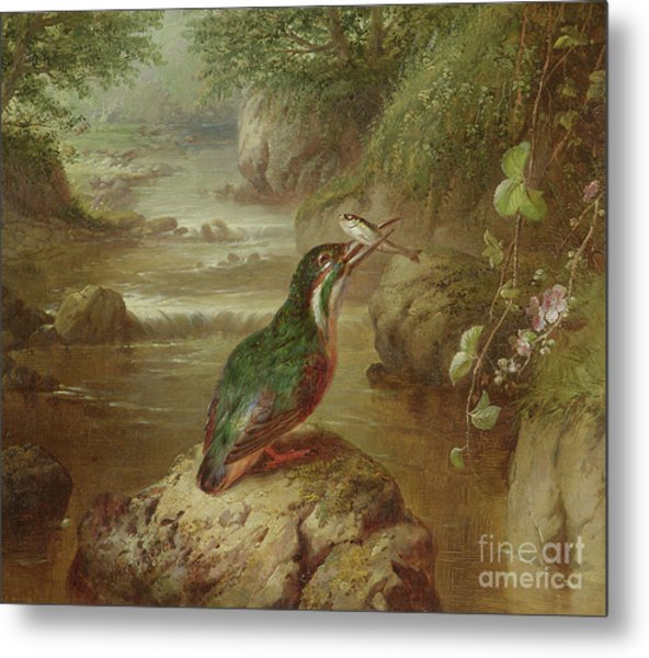 The Haunt Of The Kingfisher Metal Print
