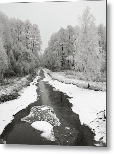 The Hoarfrost. Kuchynivka, 2014. Metal Print