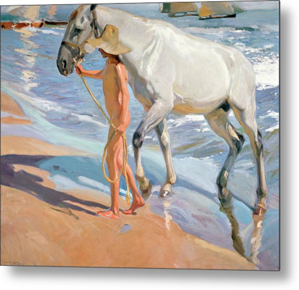 The Horse's Bath Metal Print