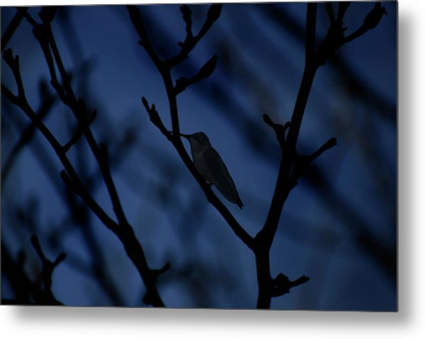 The Hummer Rests Metal Print