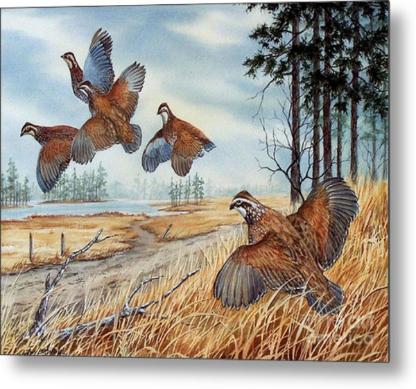 The Hunt  Sold Metal Print