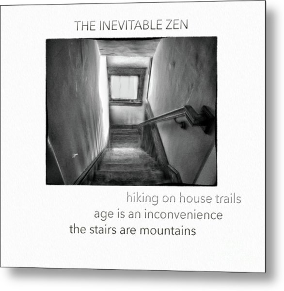 The Inevitable Zen  Metal Print by Steven Digman