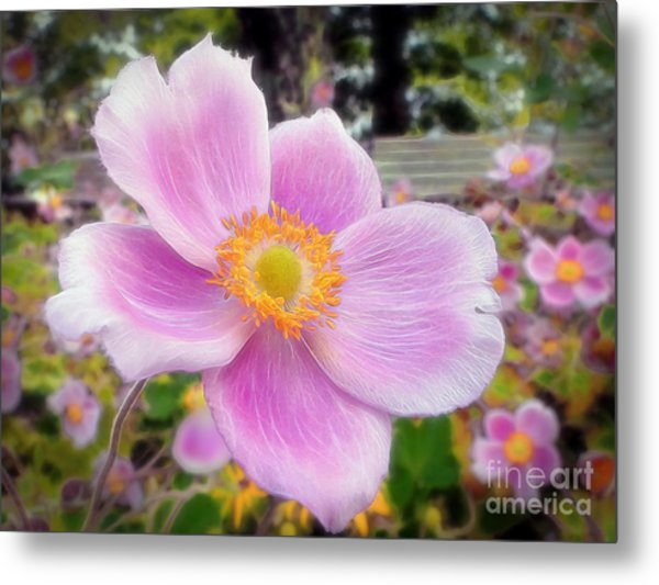 The Jewel Of The Garden Metal Print