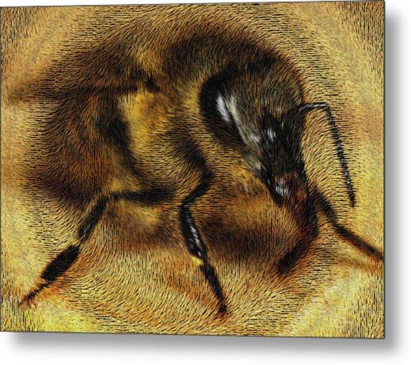 The Killer Bee Metal Print