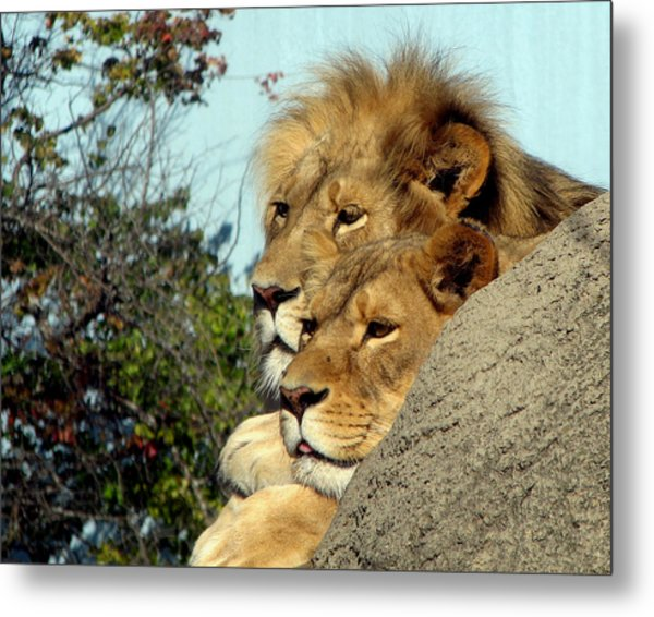 The King And Queen 1 Metal Print