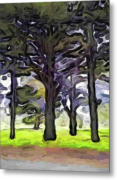 The Landscape With The Trees In A Row Metal Print