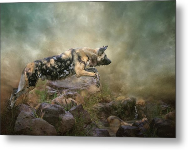 The Leap Metal Print