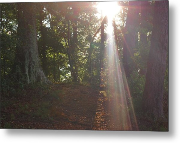 The Light Metal Print