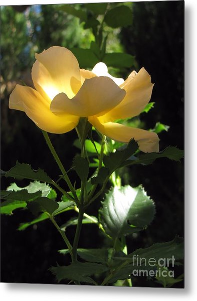 The Light Within 2 Metal Print