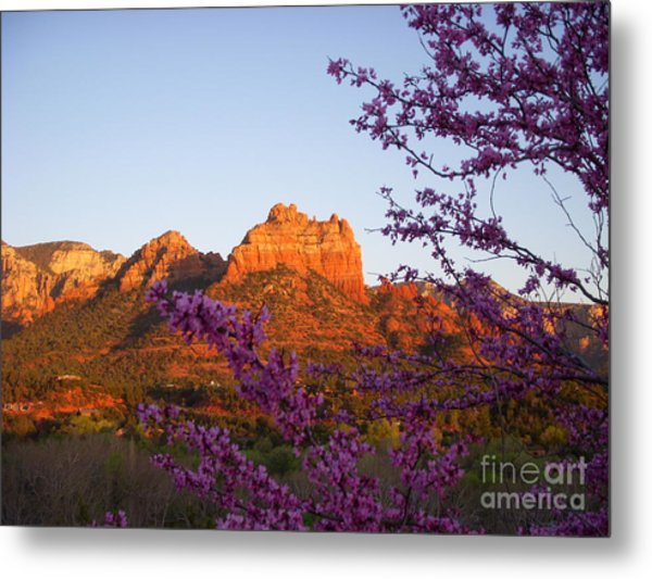 The Light Within Metal Print by Amy Strong