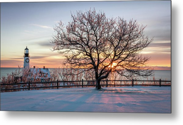 The Lighthouse And Tree Metal Print