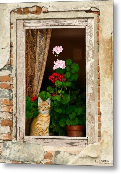 The Little Tuscan Tiger Metal Print