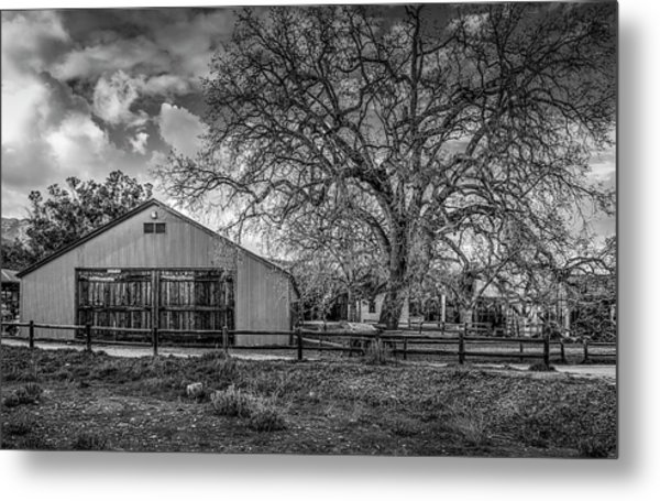 The Livery Stable And Oak Metal Print