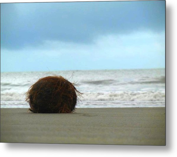 The Lonely Coconut Metal Print
