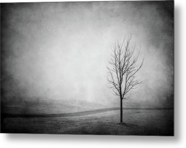 The Lonely Path Metal Print