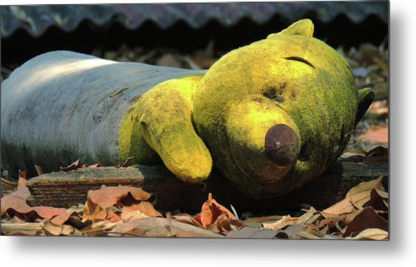 The Lonely Teddy Bear Metal Print